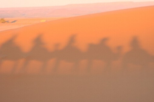 L - Morocco - Camel safari ~ Sunset, Erg Chebbi