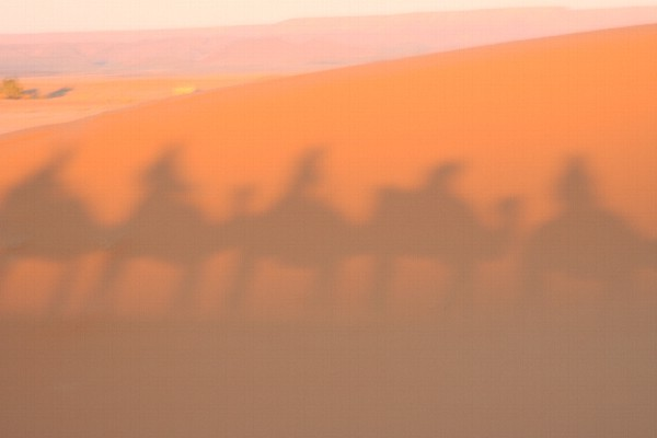 Sunset safari, Morocco