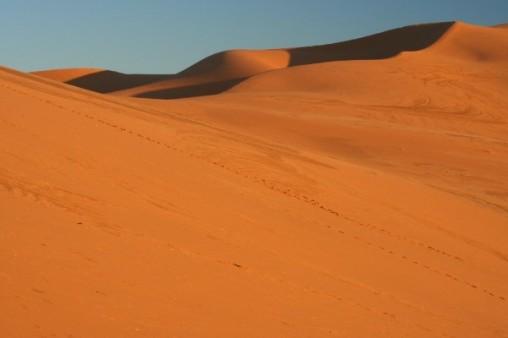 L - Morocco - Walking the crescent, Erg Chebbi