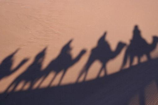 On safari, Morocco