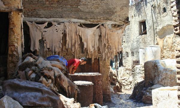 P - Morocco - Man in dye vat, Chouwarra Tanneries, Fes