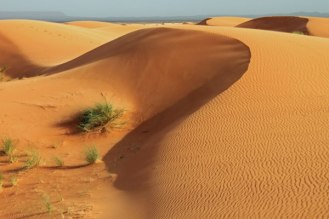 Algeria beyond the Dunes