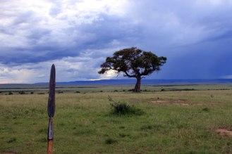 Masai Spear, Masai Mara, Kenya