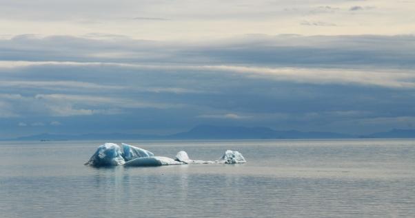 Icebergs, Endicott Arm