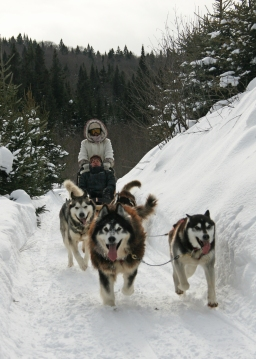 Lola driving the dog sled team with Axelle & Dante in the lead