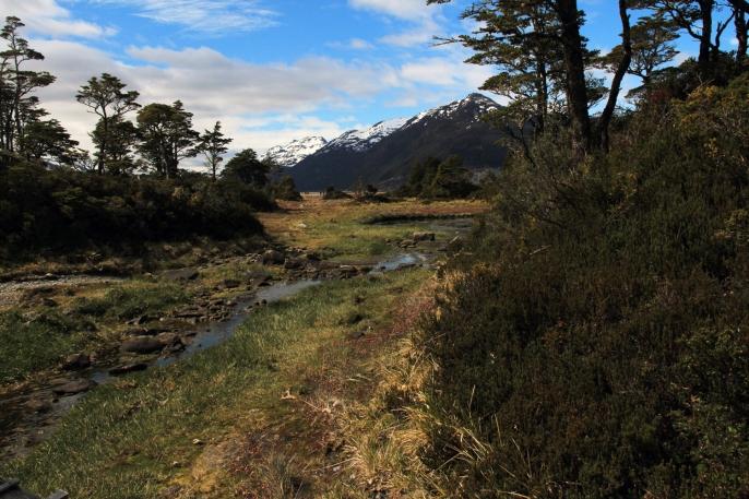 HIking Tierra del Fuego