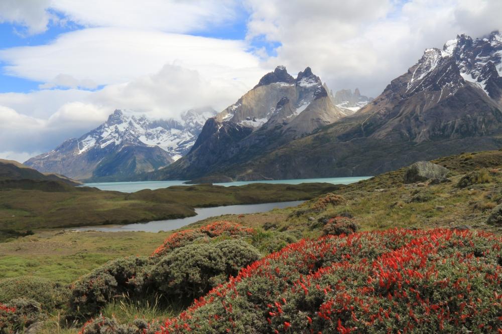 TdP Torres del Paine