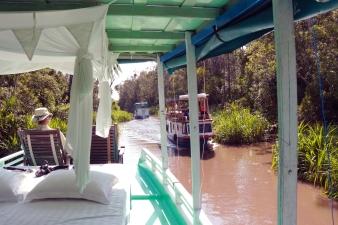 Cruising along the Sekonyer River