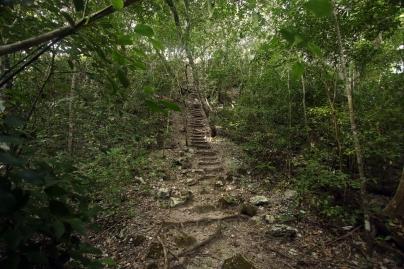 El Mirador, El Tigre steps