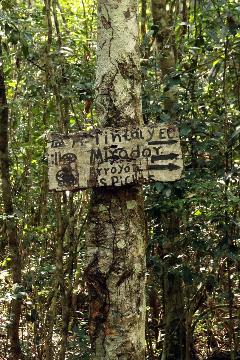Maya Archaeological Site Sign