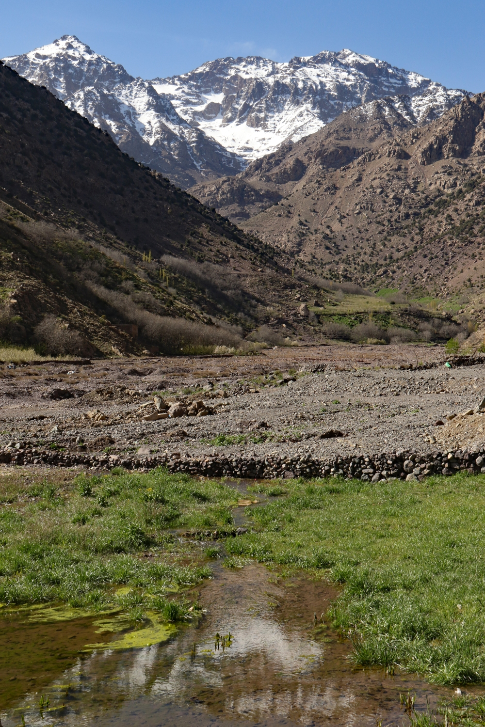 On the plains...one last look at Toubkal